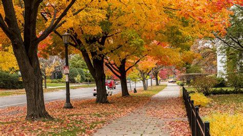 fall  saint paul weekend visit saint paul