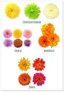 44 best fall flower arrangements images on pinterest