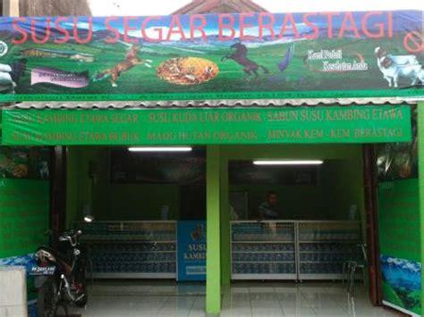 Jual Bibit Kambing Di Tangerang jual kambing etawa bubuk energoat di tangerang
