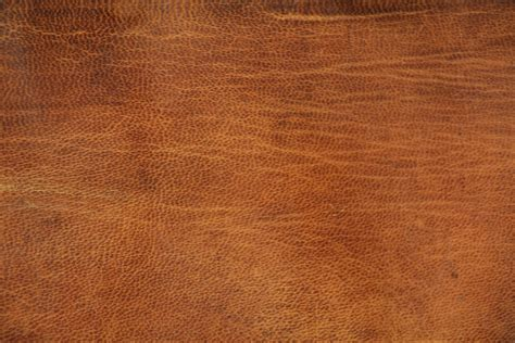 cuero material tan leather texture skin wrinkle material fabric
