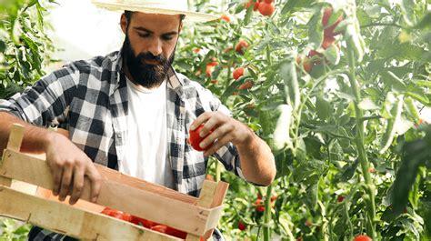 profitable crops small farms  grow  sell