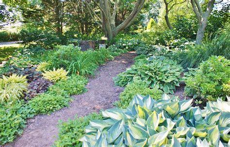 Hosta Garden Ideas Shade Garden With Hosta Collection 20 Wonderful Hosta