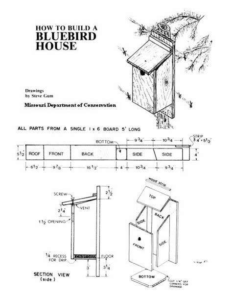 25 Best Ideas About Bluebird Houses On Pinterest Blue Best Bird House Plans
