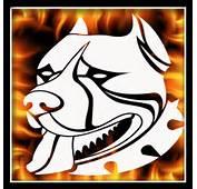 10 00 Airbrush Stencils Store Air Brushing Skull