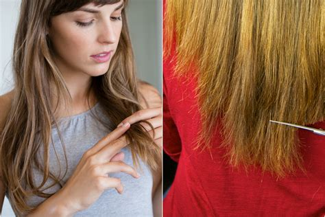 when can you color your hair after brain surgery hair breakage 10 common causes and how to fix them allure