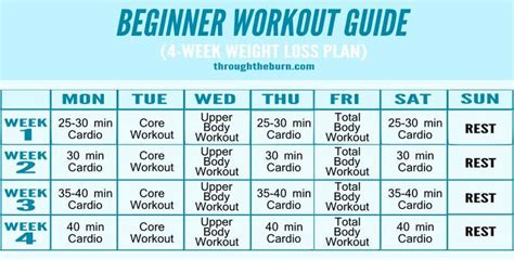 weight bench routine for beginners 17 best images about get fit don t quit on pinterest