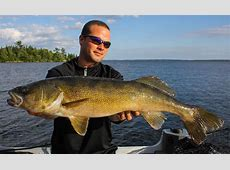 Lake of the Woods Kenora fishing guide - Musky Guide Reputable Site