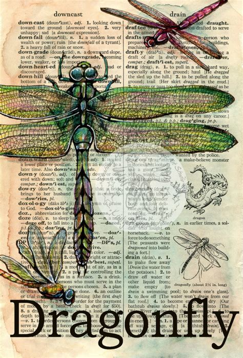 doodle free dictionary print dragonfly mixed media drawing on distressed