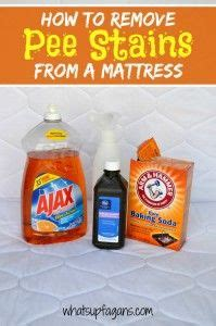How To Get Stains Out Of Bed Mattress by 1000 Ideas About Stains On How To Remove