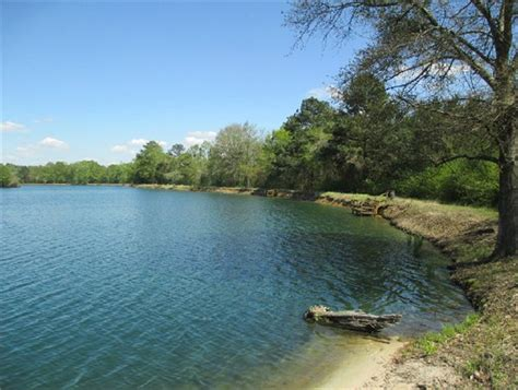 land for sale in county alabama ozark dale county al land for sale 48 acres at
