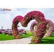 Cuori Di Fiori Al Miracle Garden Dubai Il Nuovo