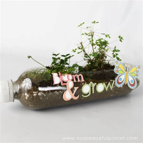 Pop Bottle Planter by Soda Bottle Crafts Our Peaceful Planet