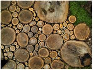 arquitectura de casas dise 241 o de veredas de troncos para