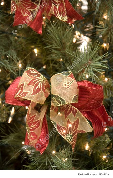 bows for tree holidays bows on tree stock image i1564120 at