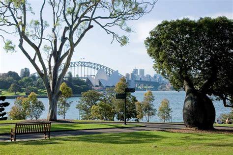 royal botanic gardens eucalypt lawn garden locations