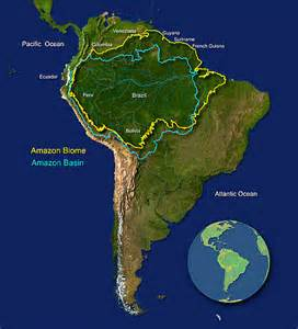 rainforest map south america about the wwf