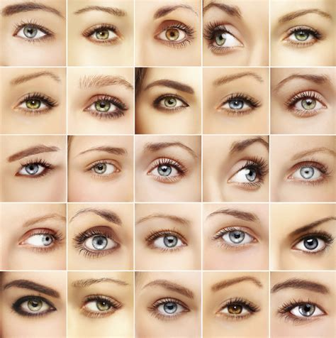 most common eye colors what you should about eye color discovery eye