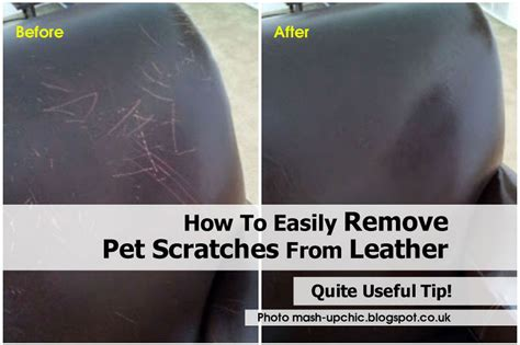 How To Repair Scratched Leather Sofa How To Easily Remove Pet Scratches From Leather