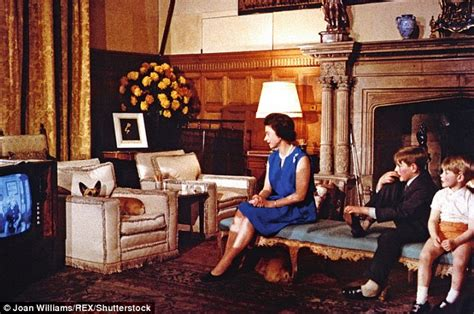the queen s corgis what the queen watches on the royal television daily