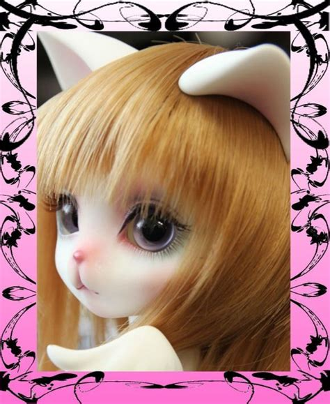 jointed doll cat 63 best jointed cats images on