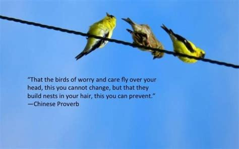 image chinese proverb worry quotes chinese proverbs