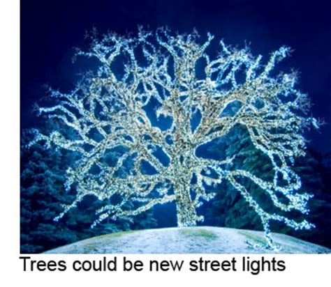 glowing green lights in trees glowing bio led trees could replace ls eta