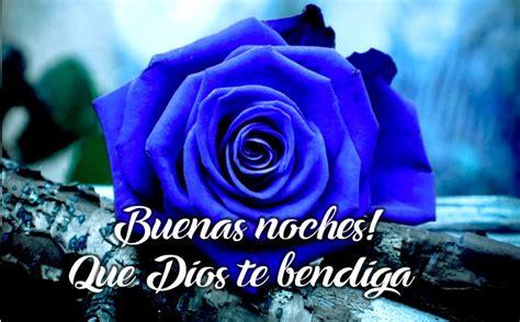 imágenes bonitas de buenas noches con rosas preciosas im 225 genes de rosas azules con mensajes de buenas