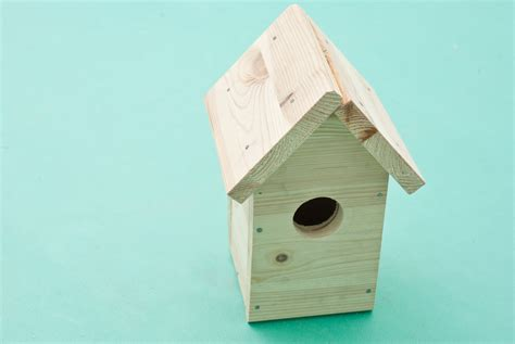 how to build a bird house howtospecialist how to build