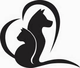 animal emergency clinic veterinary emergency clinic in