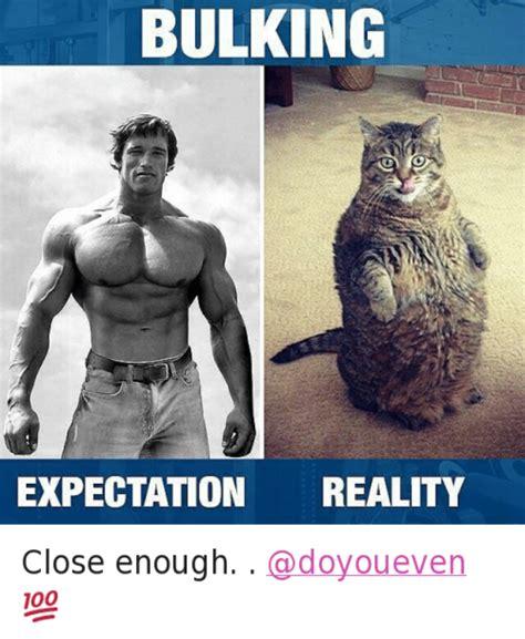 Schwarzenegger Meme - arnold schwarzenegger meme 17 wishmeme