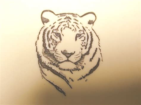 white tiger tattoos japanese white tiger memes