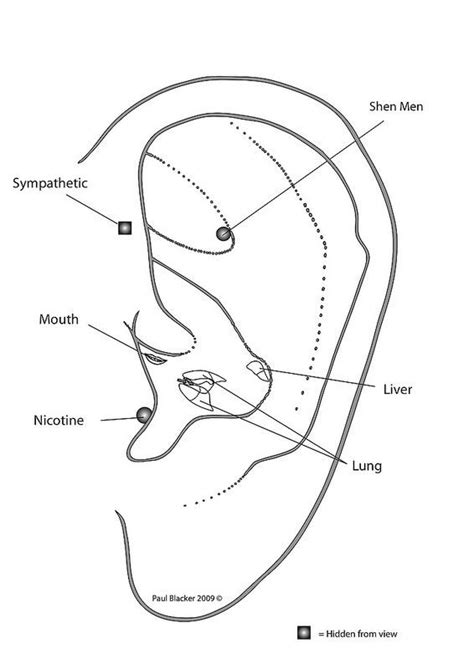 Detox Acupuncture Protocol by 17 Best Ideas About Ear Reflexology On