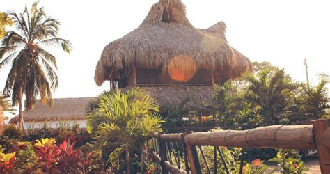 Tiki Hut Palomino by Tiki Hut Bed And Breakfast Hostel In Palomino Colombia