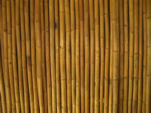bamboo wall by nixie04 on deviantart