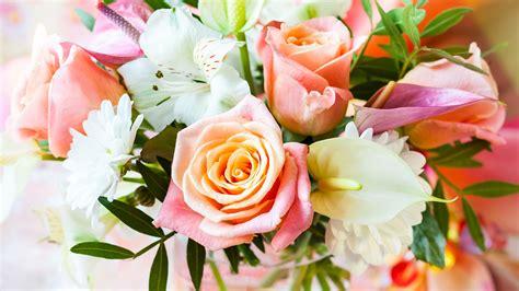 The Best Flowers 3840x2160 uhd 4k