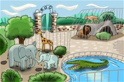 Home Design 3d App Tutorial how to draw a zoo drawingnow