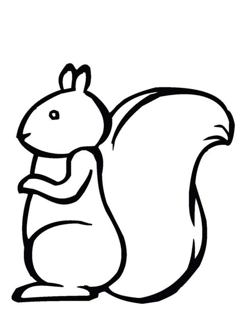 coloring page squirrels squirrel coloring pages download and print squirrel