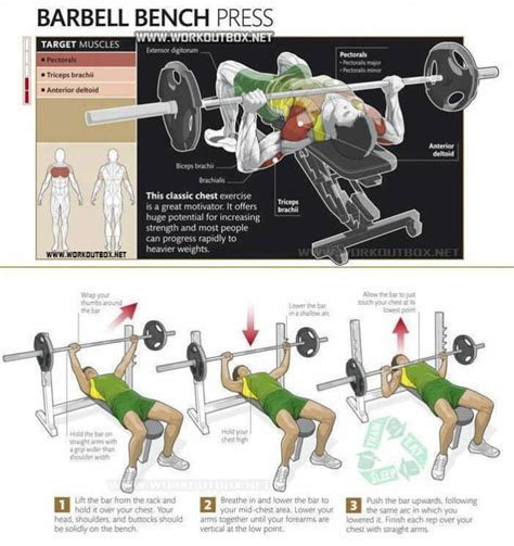bench press procedure barbell bench press chest exercise healthy fitness tag