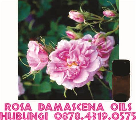 Minyak Atsiri Mawar jual minyak mawar to buy jual minyak atsiri