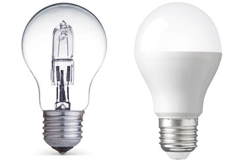 and white bulb lights the difference between warm white daylight and cool white
