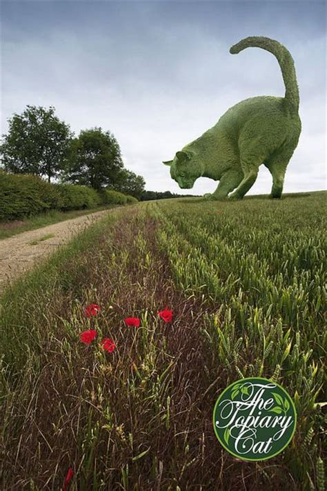 topiary cat 17 best images about the topiary cat on cat