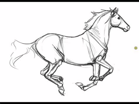 coloring pages of horses realistic free coloring pages of horses realistic