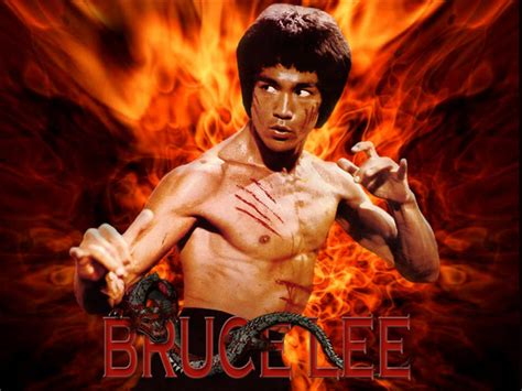 imagenes de bruce lee wallpaper displaying items by tag bruce lee