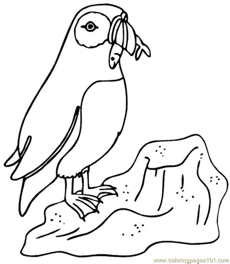 penguin coloring page pdf coloring pages penguin coloring page 05 birds gt penguin