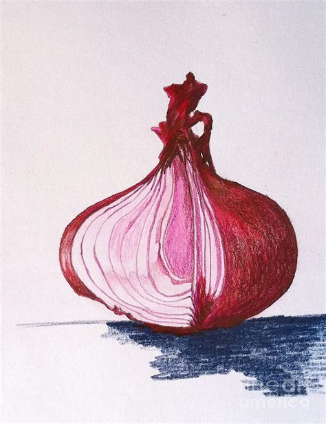 Design Outside Of House Online Free how to draw red onion