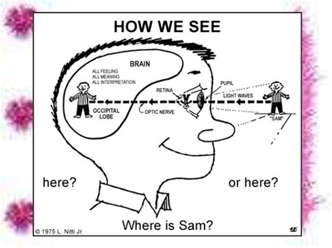 how does a see how we see things