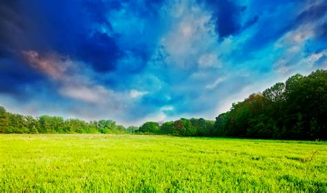 Lukisan Sawah 6 gambar padang rumput dan langit yang mendung dekorasi rumah padang