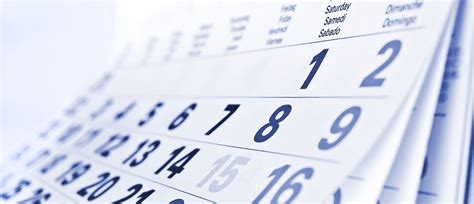 Check My Calendar How To Create A Content Calendar The Check Align Flex