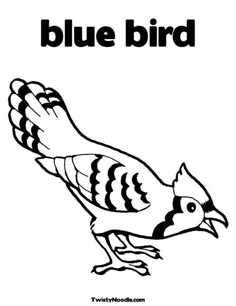 bird coloring page preschool bird coloring pages for preschoolers coloring home