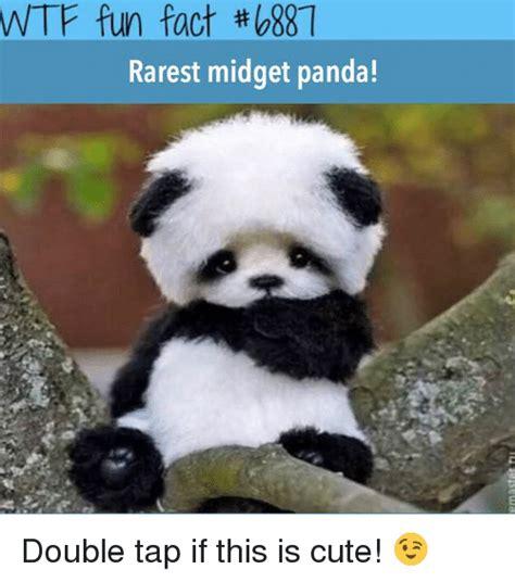 Panda Meme Mascara - panda eye makeup meme mugeek vidalondon
